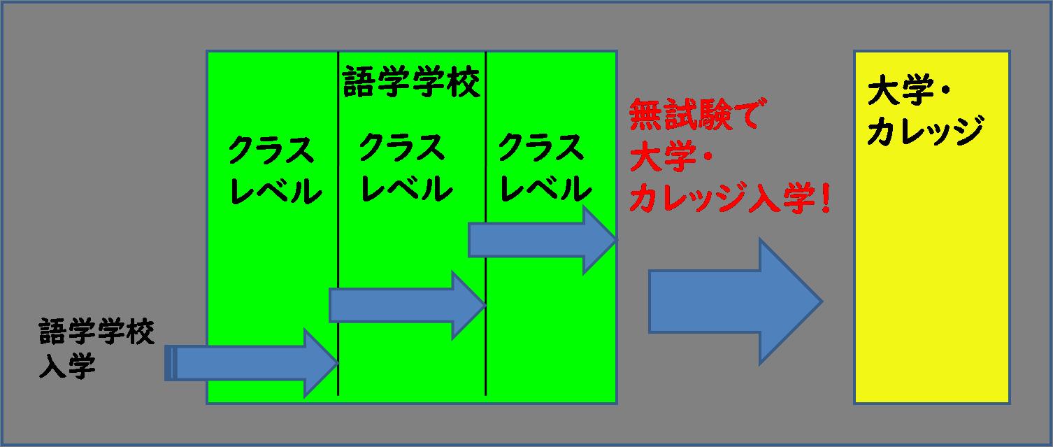 パスウェイ図
