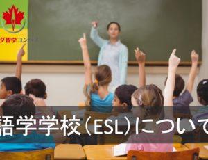 カナダの語学学校(ESL)について