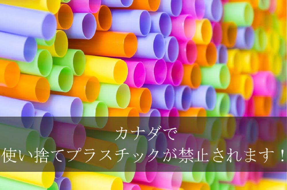 使い捨てプラスチック禁止