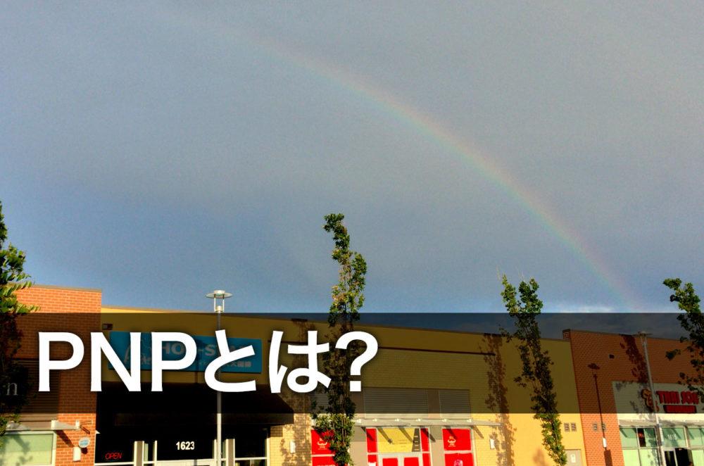 PNPとは