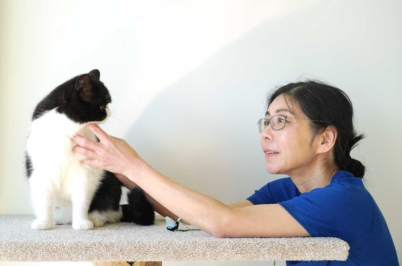 モモセ先生とネコ