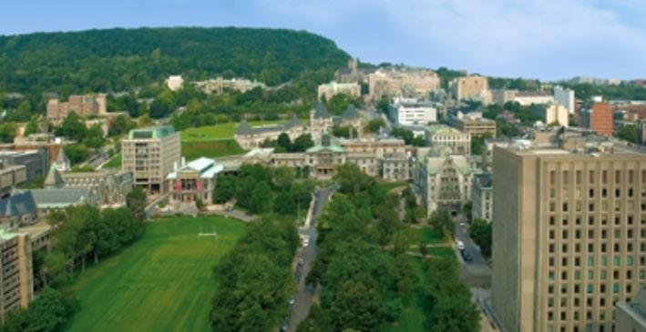 McGill University 画像